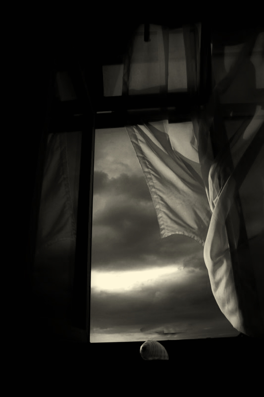 wind_and_window_2_by_aykanozener1